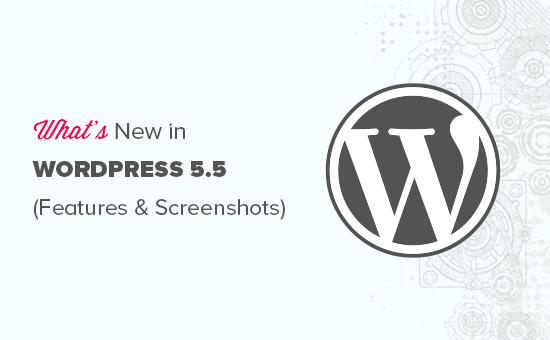 Caractéristiques et captures d'écran de WordPress 5.5